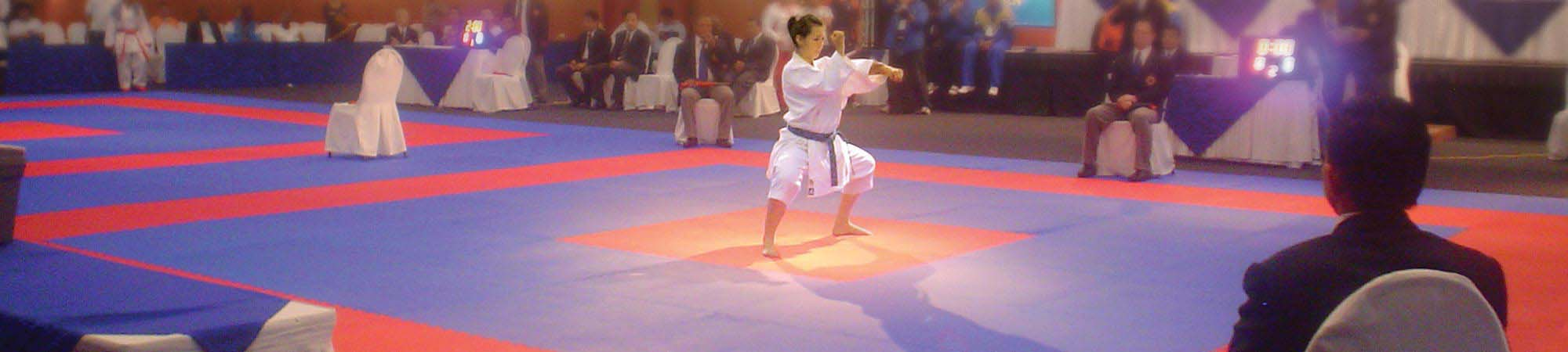 Hatashita | Canada's Training Mats and Sport Flooring Supplier